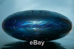 2-SIDED Tank drum happy drum handpan steel tongue drum Element Water 12'' 30 cm